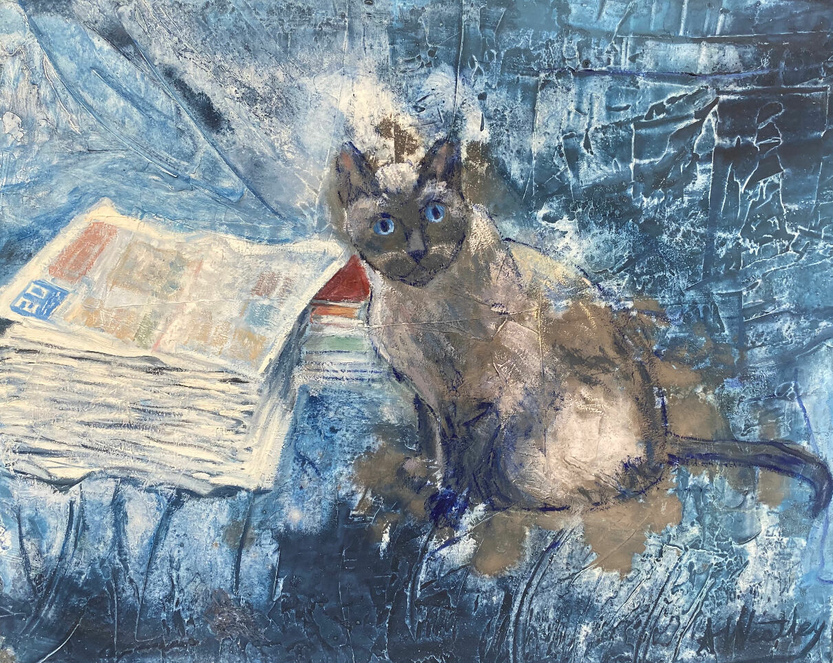 Siamese cat with newspapers